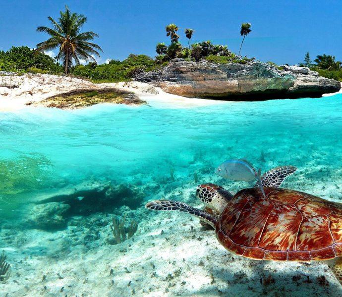 Waikiki Resort Zanzibar 3*