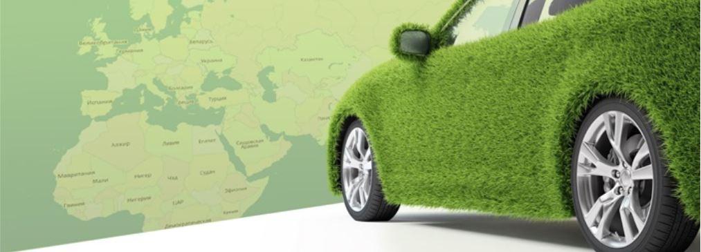 Где и как оформить «Зеленую карту»