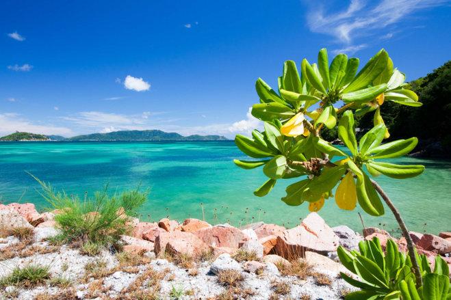 """Результат пошуку зображень за запитом """"Туристы смогут арендовать целый остров на Сейшелах"""""""